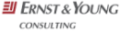 Ernst & Young Consultant